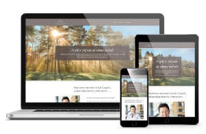 Webdesign Referenz Bachofer